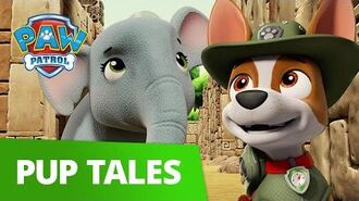 PAW Patrol Pups Save the Maze Explorers Rescue Episode PAW Patrol Official & Friends!