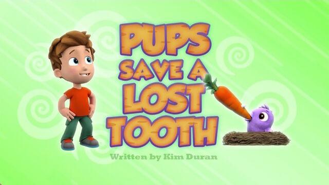 File:PAW Patrol Lost Tooth Title Card.jpg