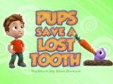 Pups Save a Lost Tooth