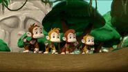 Monkey-dinger 36