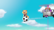 Pups Soccer 56