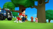 PAW.Patrol.S01E26.Pups.and.the.Pirate.Treasure.720p.WEBRip.x264.AAC 914881