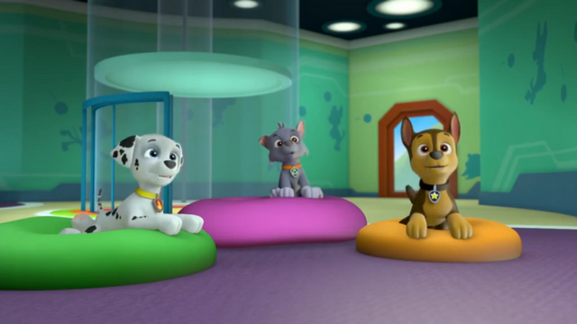 File:Pups Watching Apollo.png