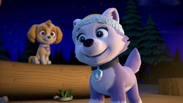 File:PAW.Patrol.S02E07.The.New.Pup.720p.WEBRip.x264.AAC 1334700.jpg