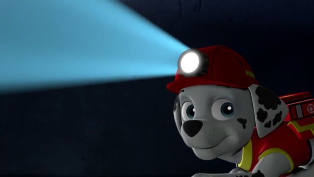 File:PAW.Patrol.S02E07.The.New.Pup.720p.WEBRip.x264.AAC 792091.jpg