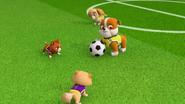 Pups Soccer 21