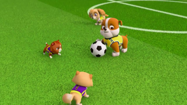 File:Pups Soccer 21.png