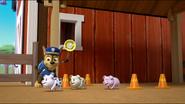 Little Pigs 8