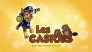 PAW Patrol La Pat' Patrouille Les Castors