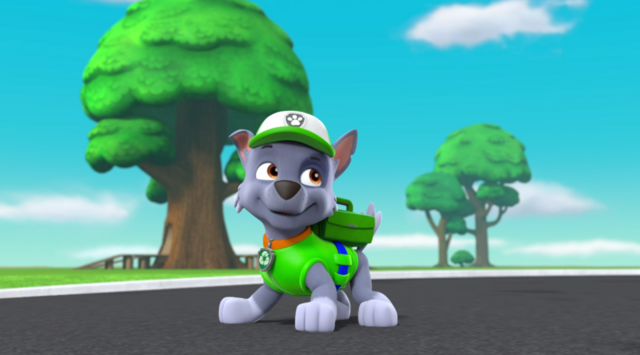 File:PAW Patrol Pups in a Fix Rocky.png