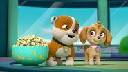Paw.Patrol.S03E26E27.Parroting.Pups.Merpups.Save.the.Turbots.720p.WEB-DL.AAC2.0.H264-BTN 703453