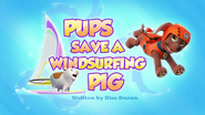 Pups Save a Windsurfing Pig (HD)