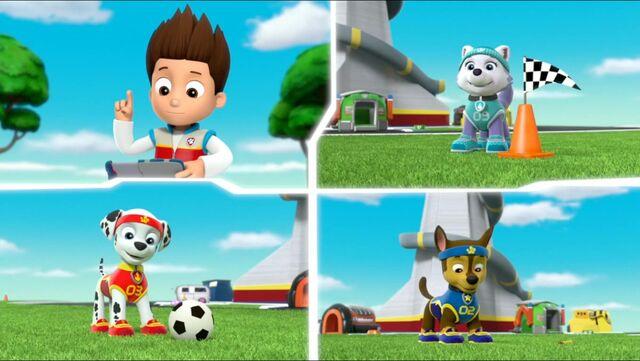 File:All Star Pups! 7.jpg