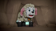 Sheep 48