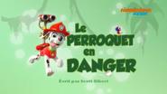 PAW Patrol La Pat' Patrouille Le Perroquet en danger