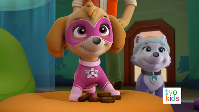 File:PAW Patrol Pups Save a Satellite Scene 34.jpg