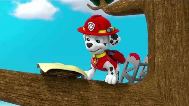 File:PAW Patrol Pups Save the Songbirds Scene 20.jpg