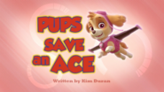 Pups Save an Ace (HD)