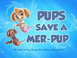 Pups Save a Mer-Pup