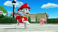 PAW.Patrol.S01E21.Pups.Save.the.Easter.Egg.Hunt.720p.WEBRip.x264.AAC 718117