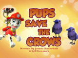 Pups Save the Crows