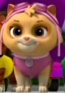 Cat Skye