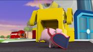 Little Pigs 33