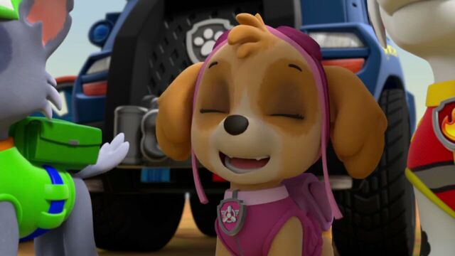 File:PAW.Patrol.S02E07.The.New.Pup.720p.WEBRip.x264.AAC 100367.jpg