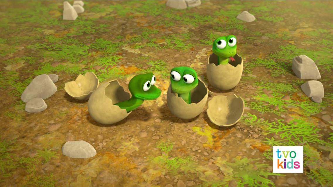 Baby Snakes Paw Patrol Wiki Fandom Powered By Wikia