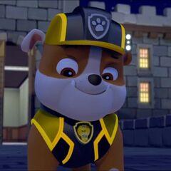 Mission PAW uniform