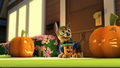 Thumbnail for version as of 15:27, October 13, 2014