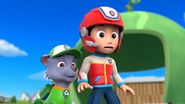 Robot (Rocky and Ryder)