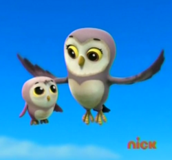 Mama Hooty with her son