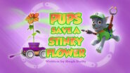 PAW Patrol Stinky Flower Title Card