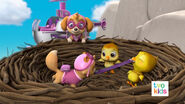 PAW Patrol Pups Save a Flying Kitty 33
