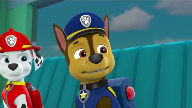 File:PAW Patrol Pups Save a School Bus Scene 9 Marshall Chase.jpg