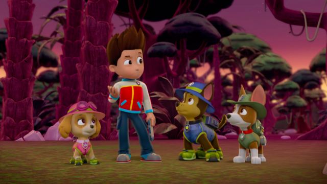 File:PAW Patrol 315 Scene 61 Ryder, Chase, Skye and Tracker.png