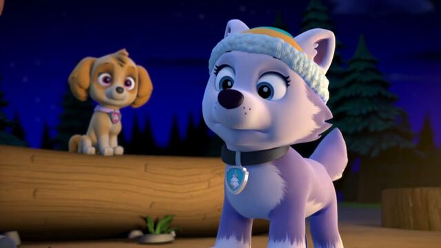 File:PAW.Patrol.S02E07.The.New.Pup.720p.WEBRip.x264.AAC 1337269.jpg