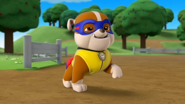 File:Rubble the super pups is here.jpg