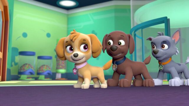 File:PAW.Patrol.S01E21.Pups.Save.the.Easter.Egg.Hunt.720p.WEBRip.x264.AAC 199232.jpg