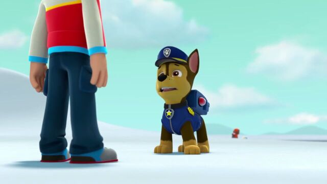 File:PAW.Patrol.S02E07.The.New.Pup.720p.WEBRip.x264.AAC 830830.jpg