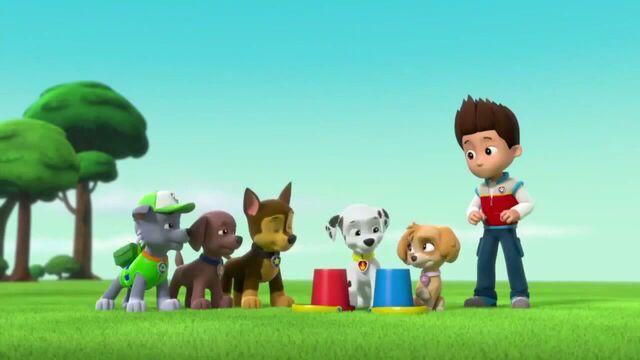 File:PAW Patrol Season 2 Episode 10 Pups Save a Talent Show - Pups Save the Corn Roast 140307.jpg