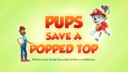 Pups Save a Popped Top (HQ)