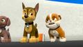 Thumbnail for version as of 23:29, September 2, 2014