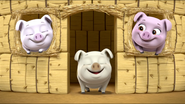 Little Pigs 9