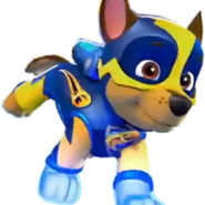 Mighty Pups Run Chase1
