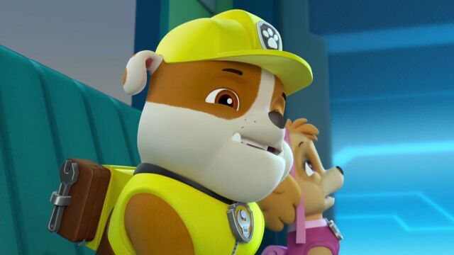 File:PAW.Patrol.S02E07.The.New.Pup.720p.WEBRip.x264.AAC 282883.jpg