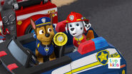 PAW Patrol Pups Save a Flying Kitty 41
