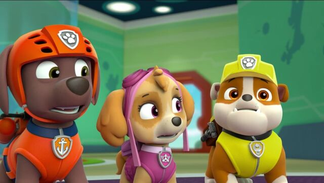 File:PAW Patrol Pups Save a School Bus Scene 26 Rubble Zuma Skye.jpg
