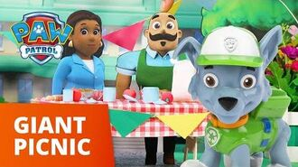PAW Patrol Pups Save A Giant Picnic Toy Episode PAW Patrol Official & Friends